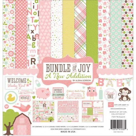 Echo Park Paper-Bundle Of Joy/A New Addition- Baby Girl Collection Kit