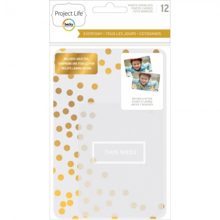 American Craft - Project Life - Everyday Edition W/Gold Foil
