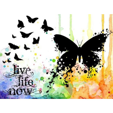 VISIBLE IMAGE - CLEAR STAMPS - Live Life Now - VIS-LLN-01