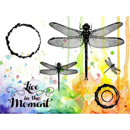 VISIBLE IMAGE - CLEAR STAMPS - Live In The Moment- VIS-LIM-01