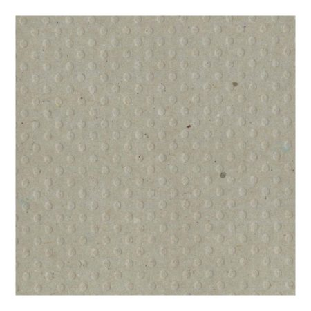 Bazzill Dotted Swiss - Kraft/Dotted Swiss - 305038