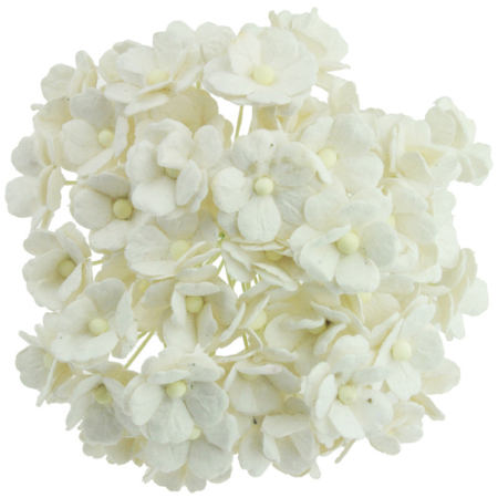 Wild Orchid Crafts - 50 LIGHT IVORY MULBERRY - White