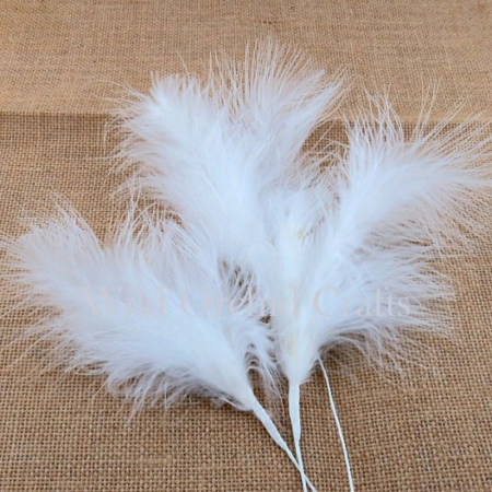 Wild Orchid Crafts - 6 LARGE FLUFFY FEATHERS