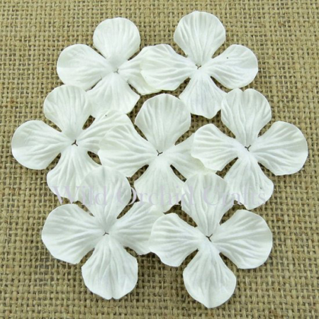 Wild Orchid Crafts - WHITE HYDRANGEA BLOOMS 25mm