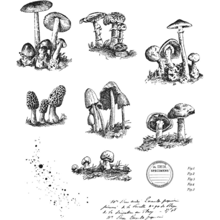 Tim Holtz Cling Stamps set - Tiny Toadstools - CMS377