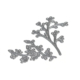 Elizabeth Craft Designs Dies - Blooming Branches - 1757